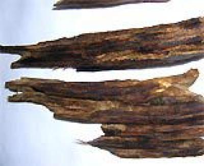 Công dụng kỳ diệu của trầm hương, kỳ nam